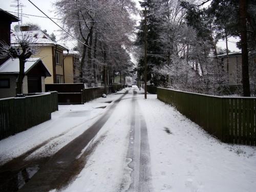 Teine lumine hommik