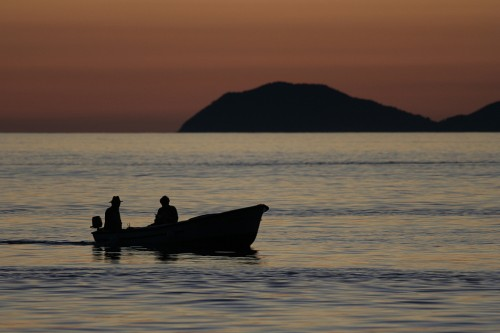 Horvaatia kalurid
