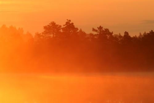 Punane päikesetõus