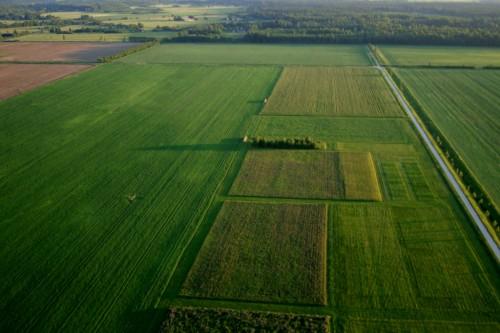 Põllud